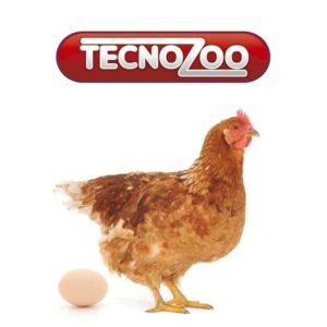 Produzione integratori per animali da reddito - Tecnozoo