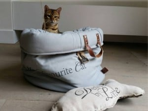 Accessori eleganti per cani e gatti