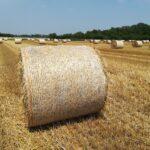 Imballaggi Agricoli