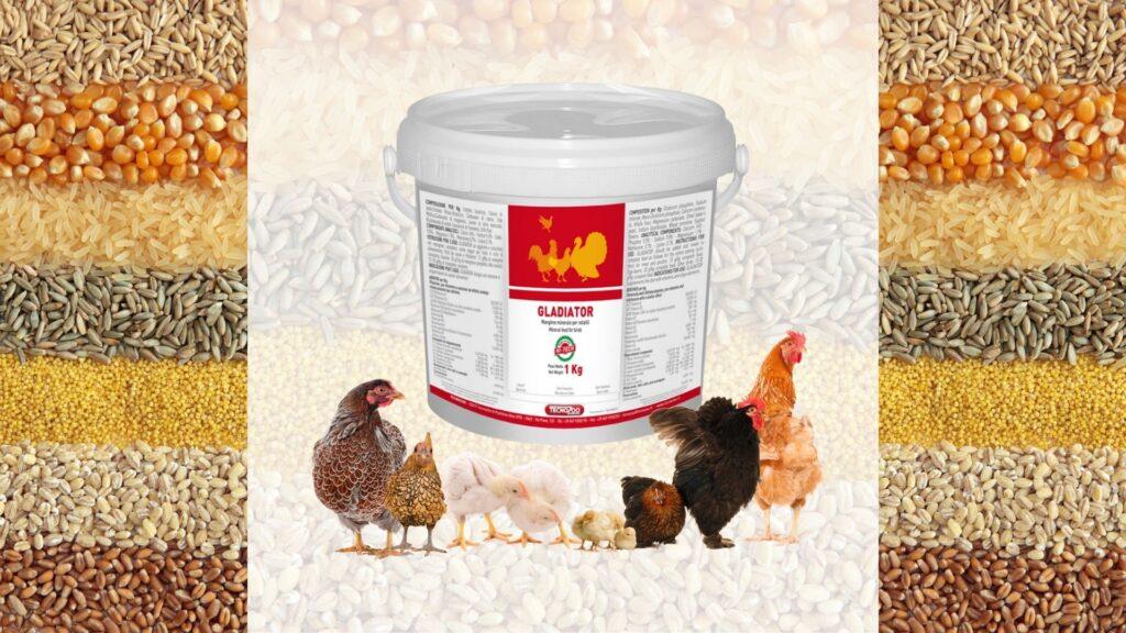 oligoelementi nel settore avicolo