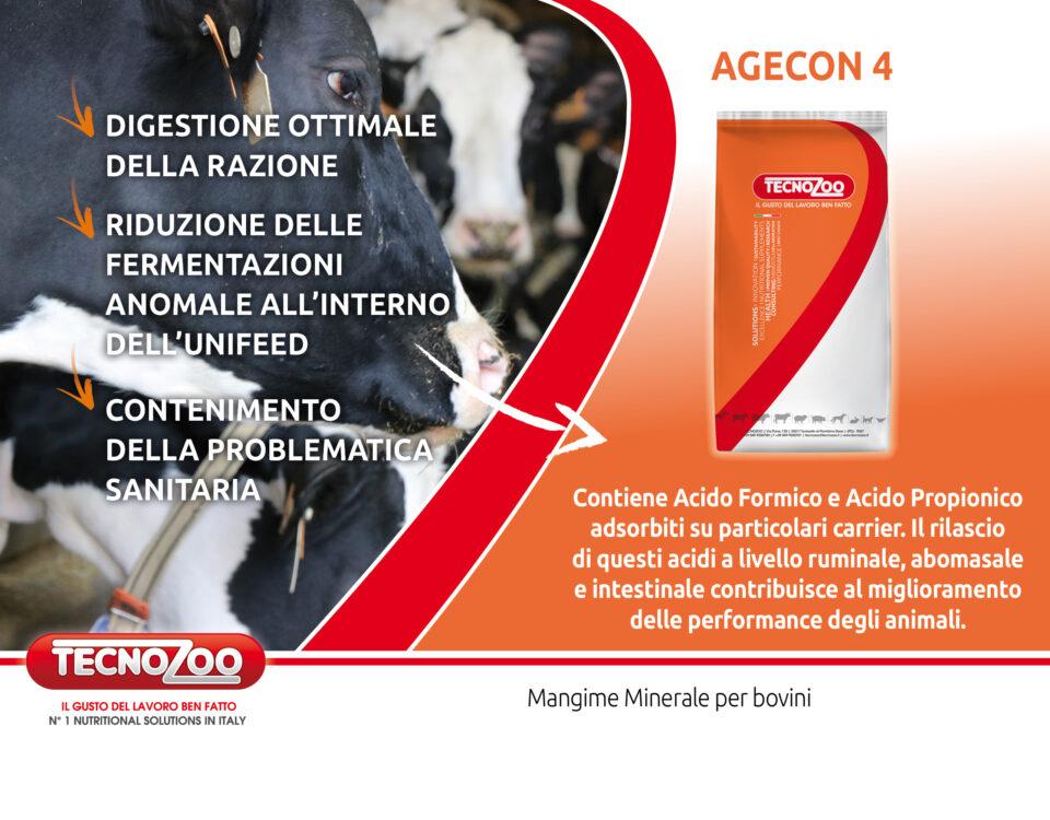 Agecon4